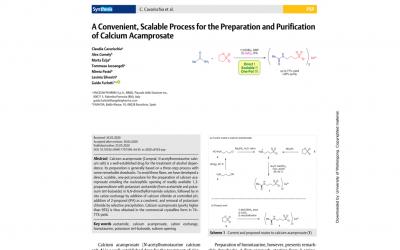 Process chemistry paper Angelini-Enantia